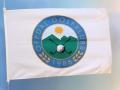 Flagget er digitaltrykket, men motivet kunne også vært silketrykket i 5 spotfarger.